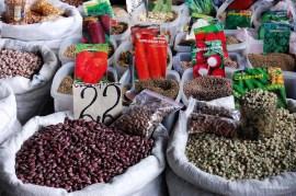 Angesichts der katastrophalen wirtschaftlichen Lage sind viele Menschen zur Subsistenzwirtschaft übergegangen. Auf dem Markt wird vielerlei Saatgut angeboten.