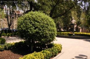Dieser Park in der Altstadt Tbilisis ist nach dem ehemaligen aserbaidschanischen Machthaber – Hayder Aliev – benannt. Die Niederlassung des staatlichen Erdölunternehmens des Nachbarlandes Aserbaidschan ist für die Pflege und Bewirtschaftung zuständig.